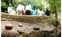 Sri.K.R.Viswambaran Kerala karshika sarvakalasala vice- chanceller.